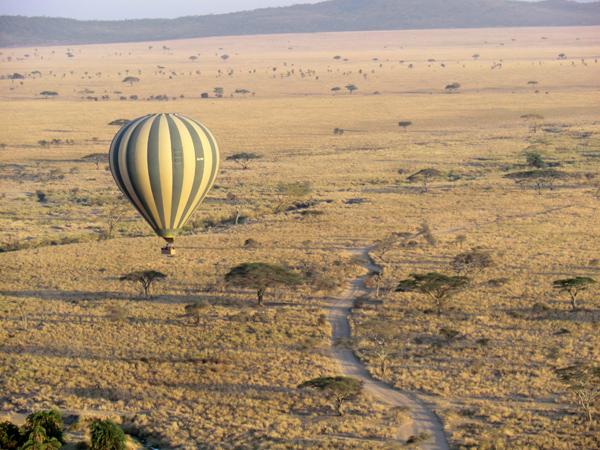 montgolfiere serengeti